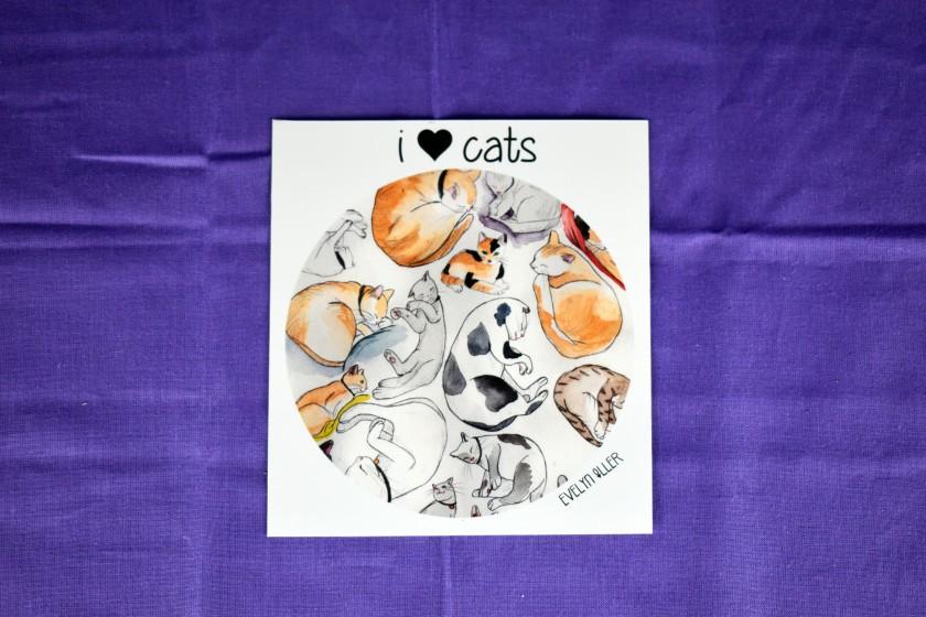 I love cats (2)