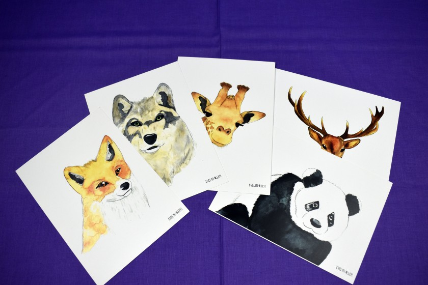 Pack save the wild (4)
